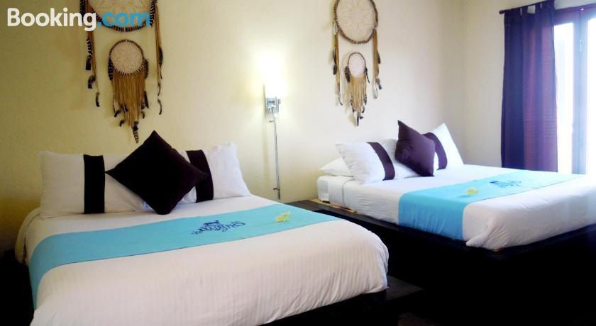 Hotel & Spa La Mansión del Burro Azul 4