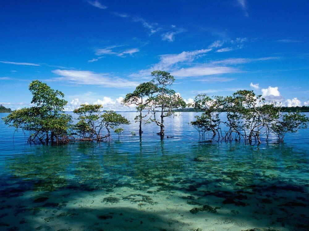 Isla Andaman Nicobar