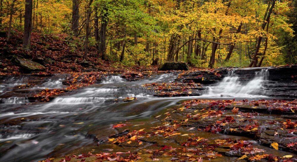 Parque Nacional del Valle de Cuyahoga