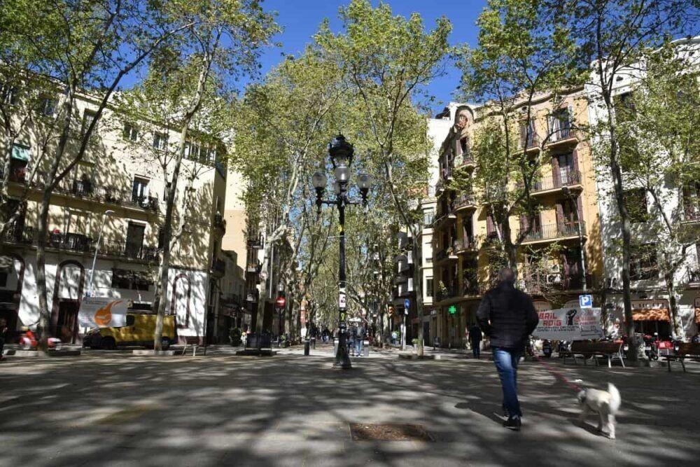 Dónde alojarse en Barcelona: Mejores Vecindarios y Hoteles
