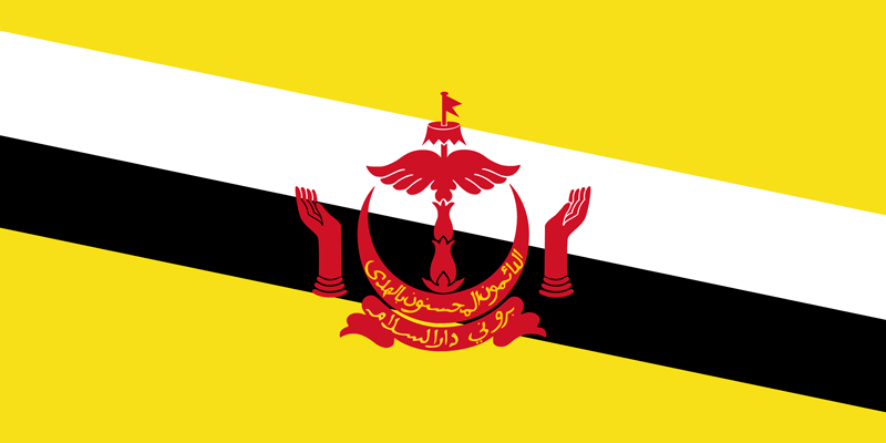 Bandera de Brunei 2