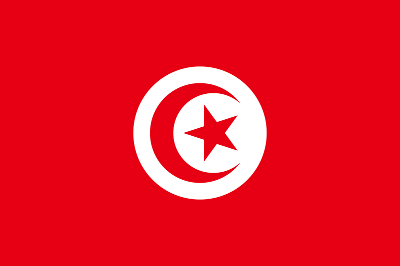 Bandera de Túnez 1