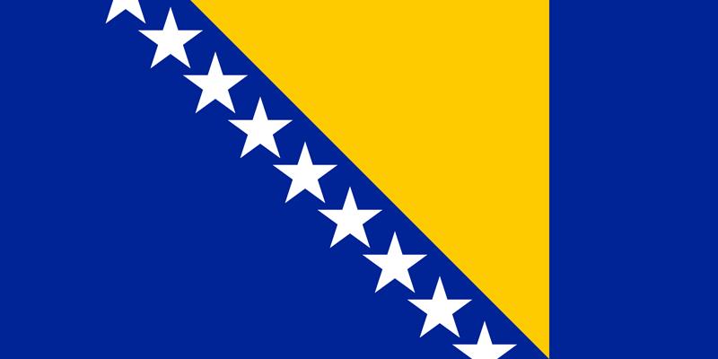 Bandera de Bosnia y Herzegovina 1