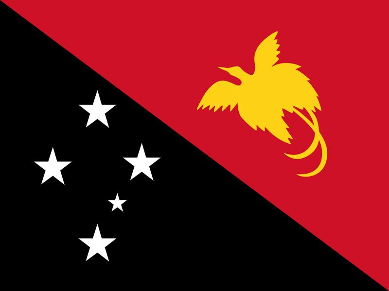 Bandera de Papua Nueva Guinea 2