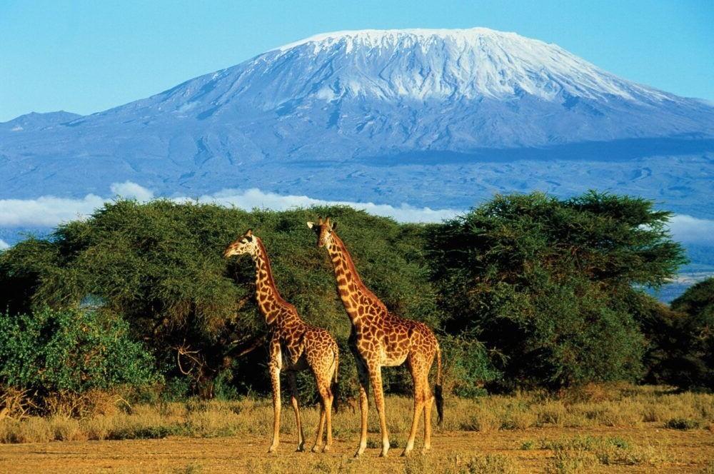 Los 12 volcanes más asombrosos del planeta