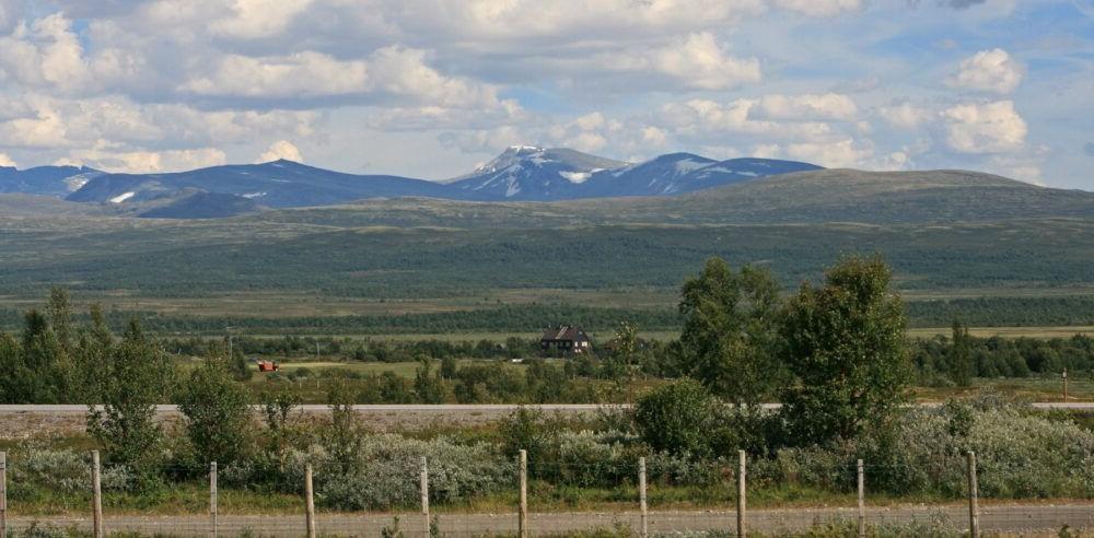 Parque Nacional Dovrefjell-Sunndalsfjella