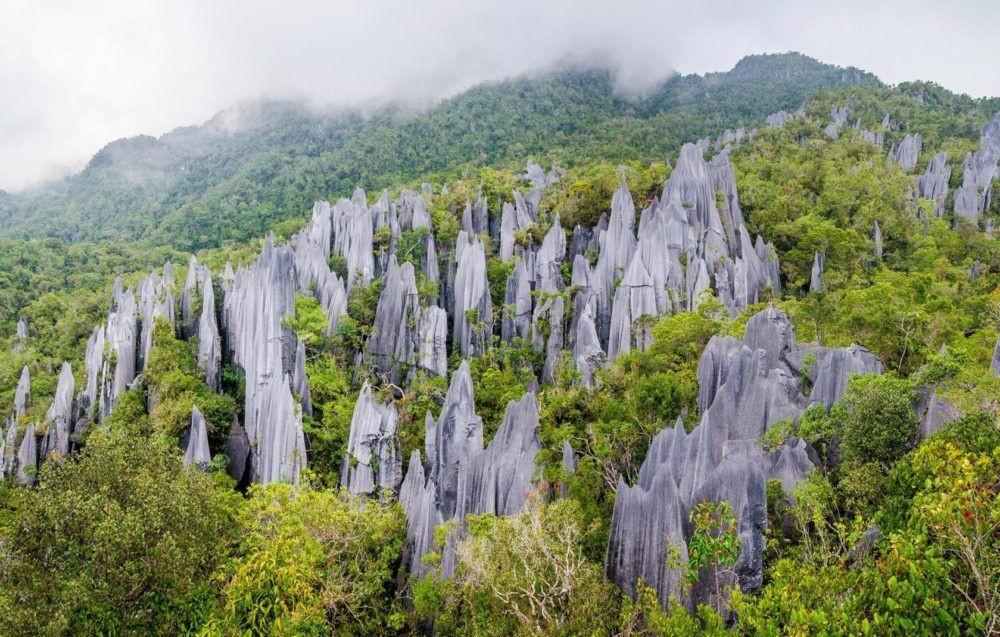 Los 12 Parques Nacionales más hermosos de Malasia