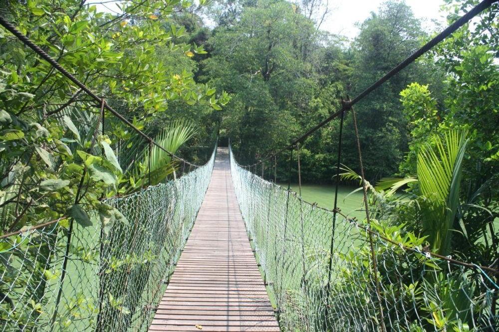 Parque Nacional de Similajau