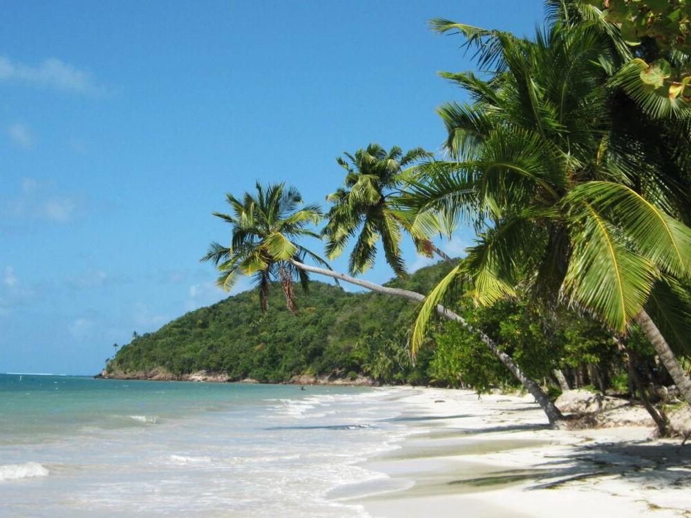 Playa Manzanillo Providencia