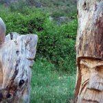 Ruta de las esculturas Bogarra Albacete