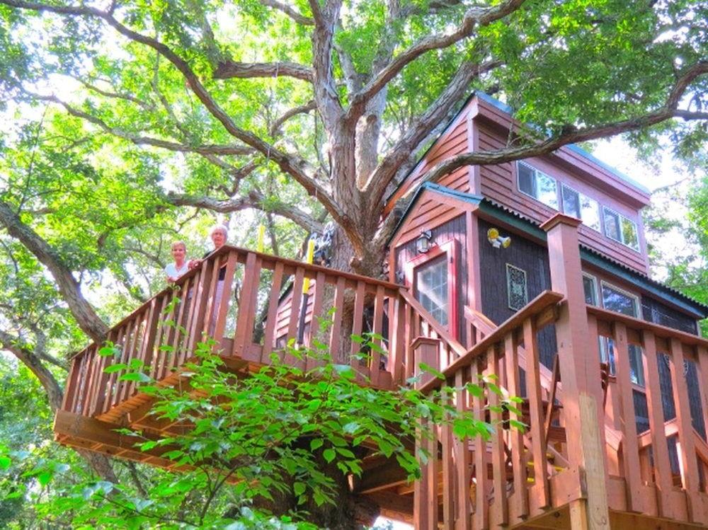 Bosque Nacional Shawnee
