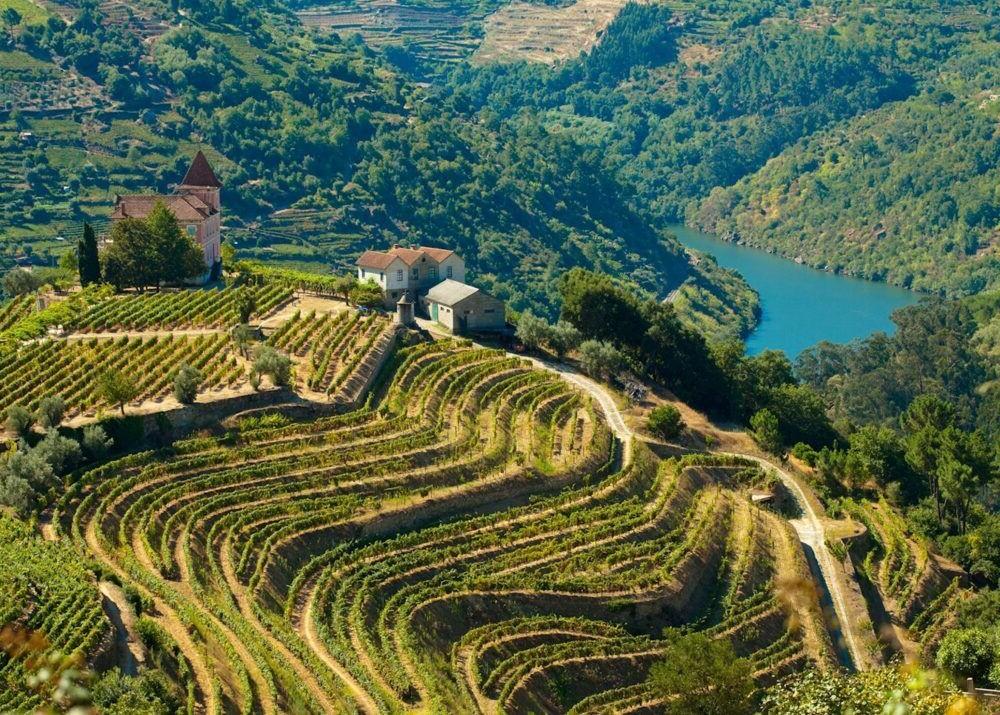7 mejores excursiones de un día desde Oporto