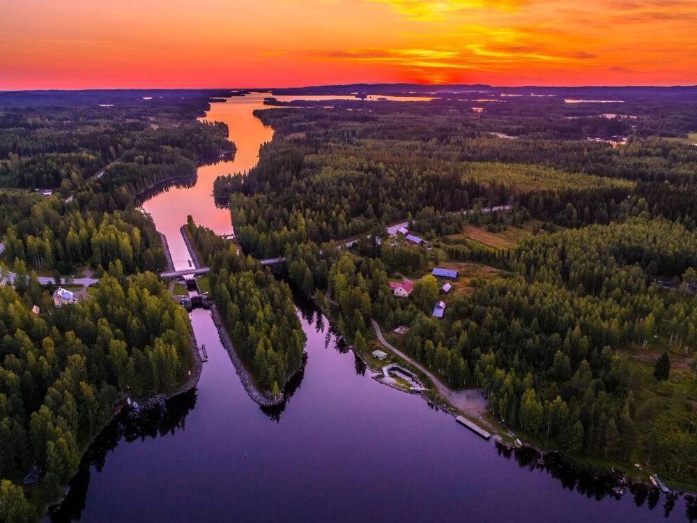 Finlandés Lakeland