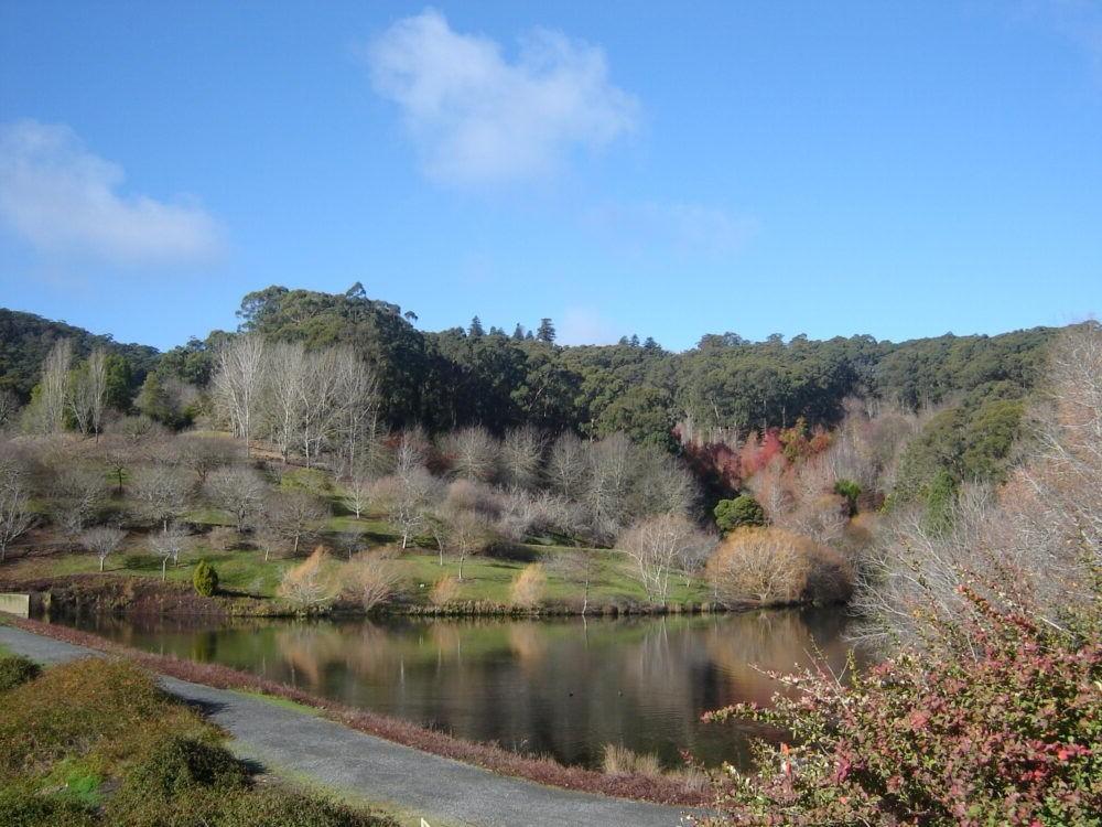 Jardín Botánico de Adelaida