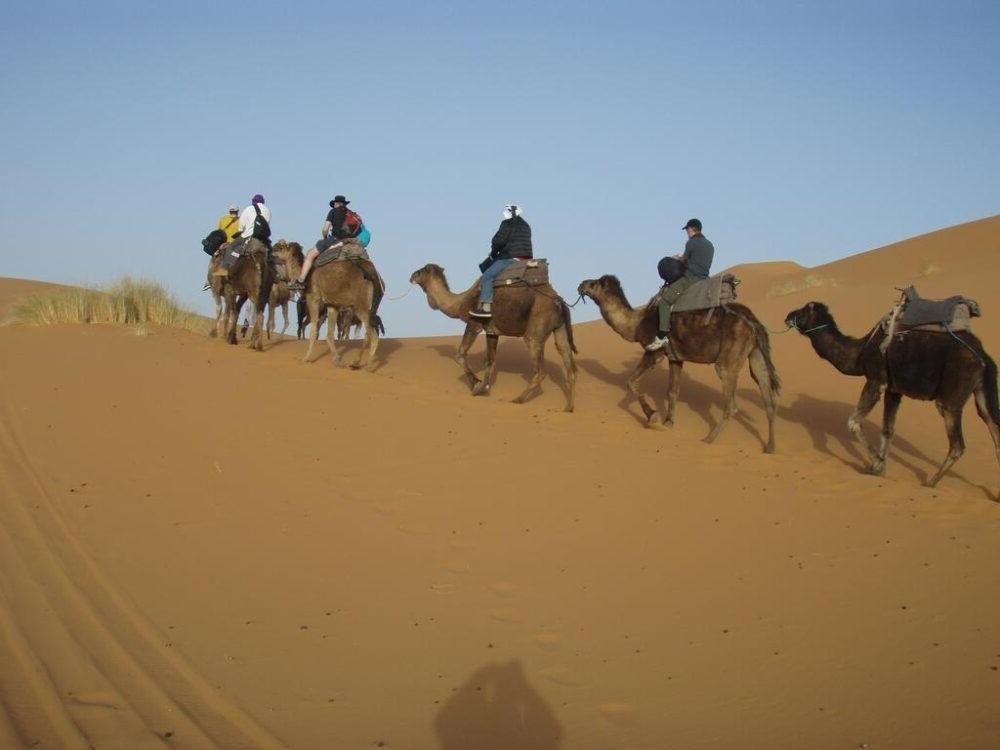Montar a caballo y en camello