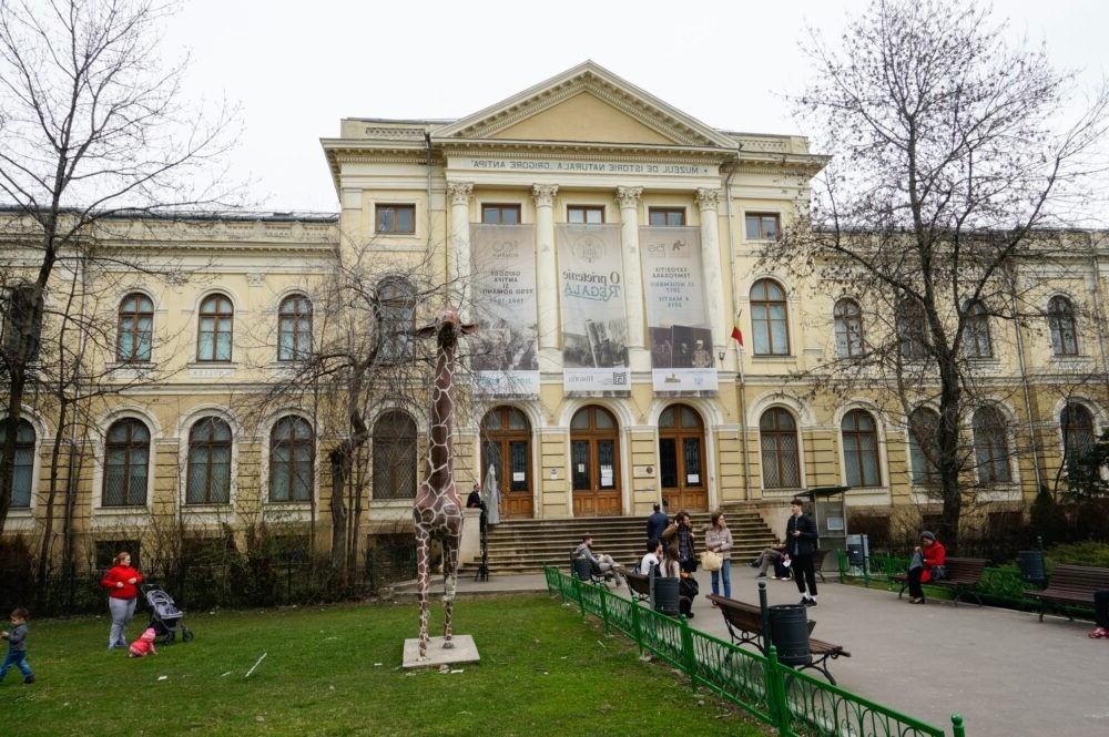 Museo de Historia Natural Grigore Antipa