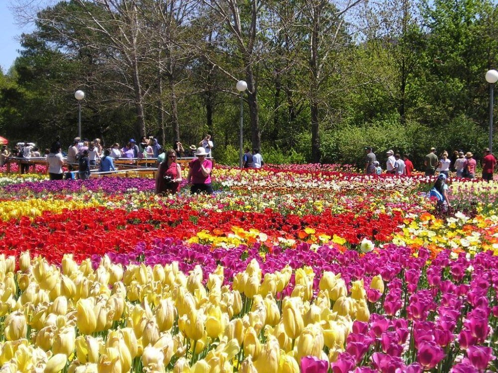 Parque Floral Dalat