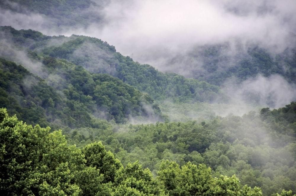 Parque Nacional Great Smoky Mountains