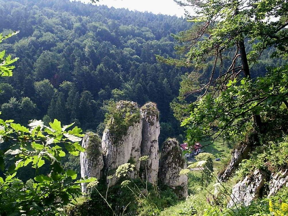 Parque Nacional de Ojcow