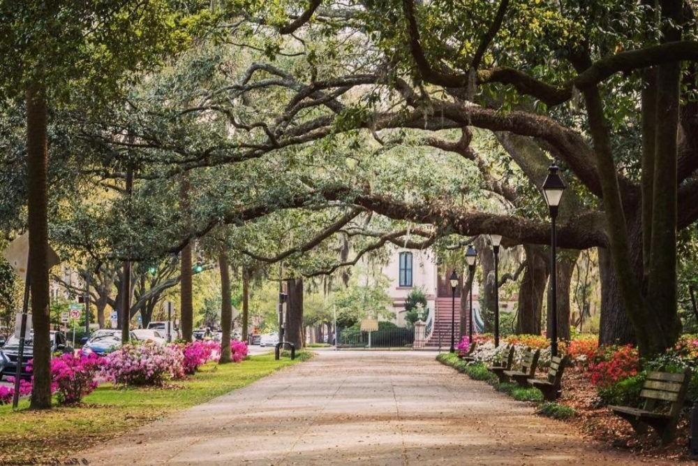 10 Mejores Lugares para Visitar en Georgia (estado)