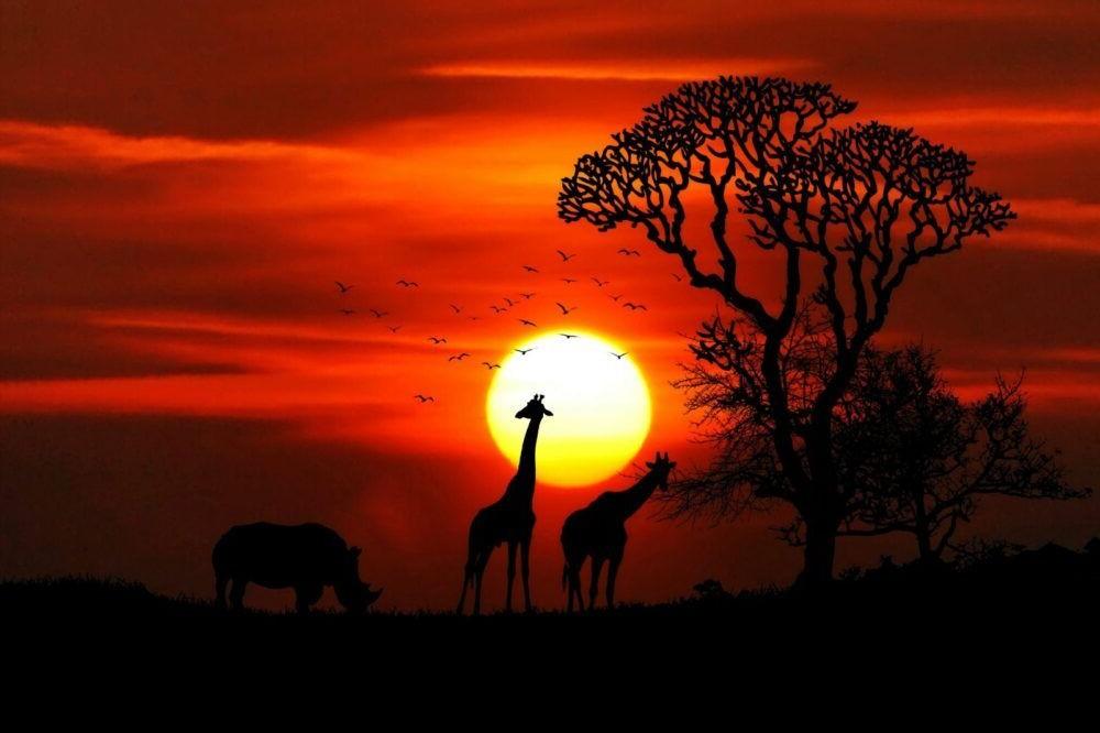 Guía de viajes de Sudáfrica
