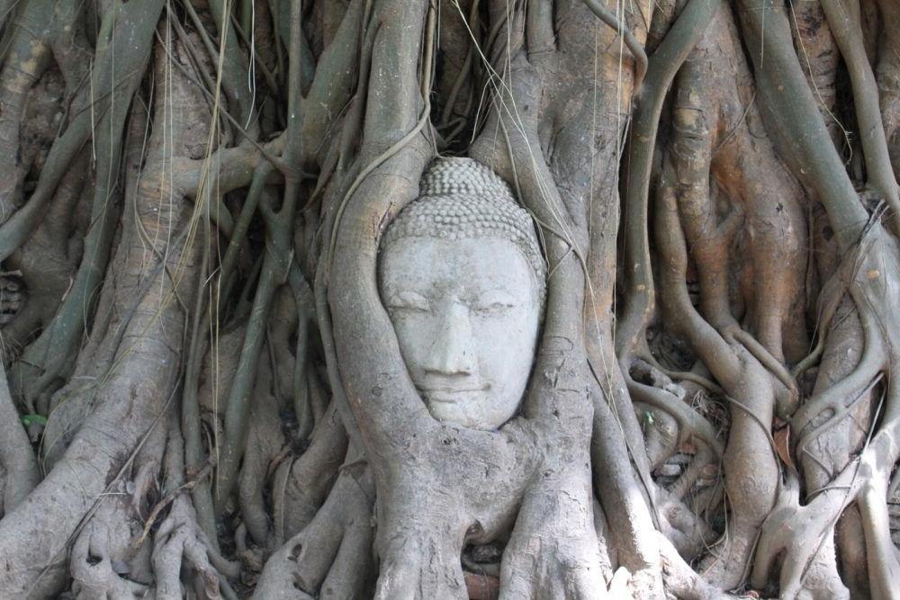 7 Atracciones más populares de Ayutthaya 2