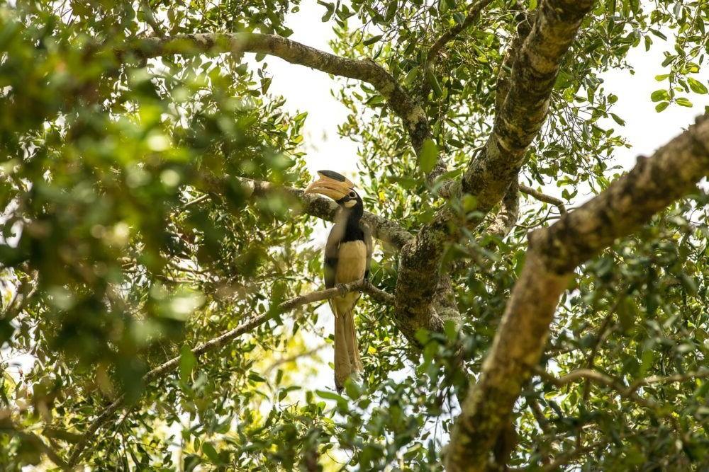 Destino Bundala National Park