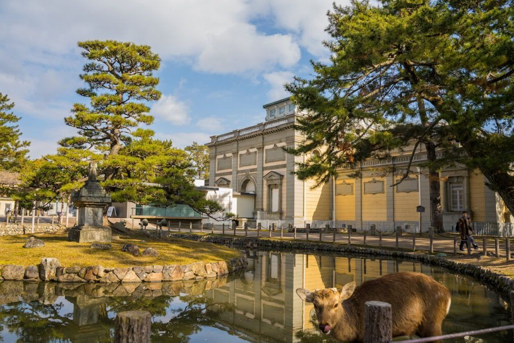Destino Japón, Museo Nacional de Nara