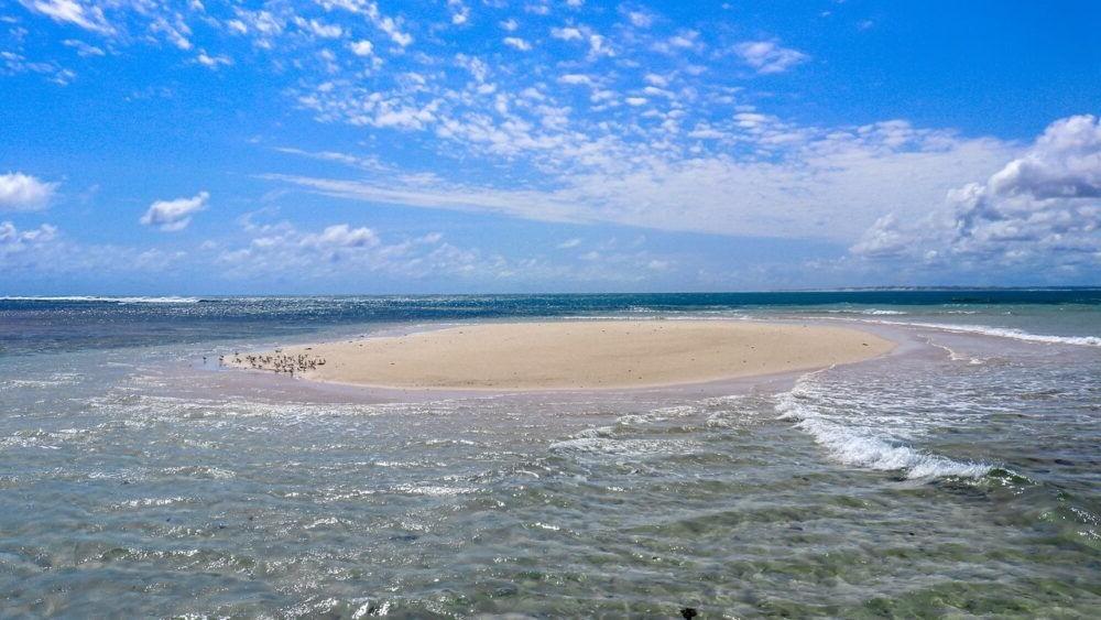 Destino Kenia, Parque Nacional Malindi Marine