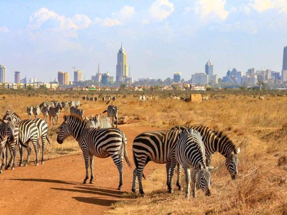 Destino Kenia, Parque Nacional Nairobi