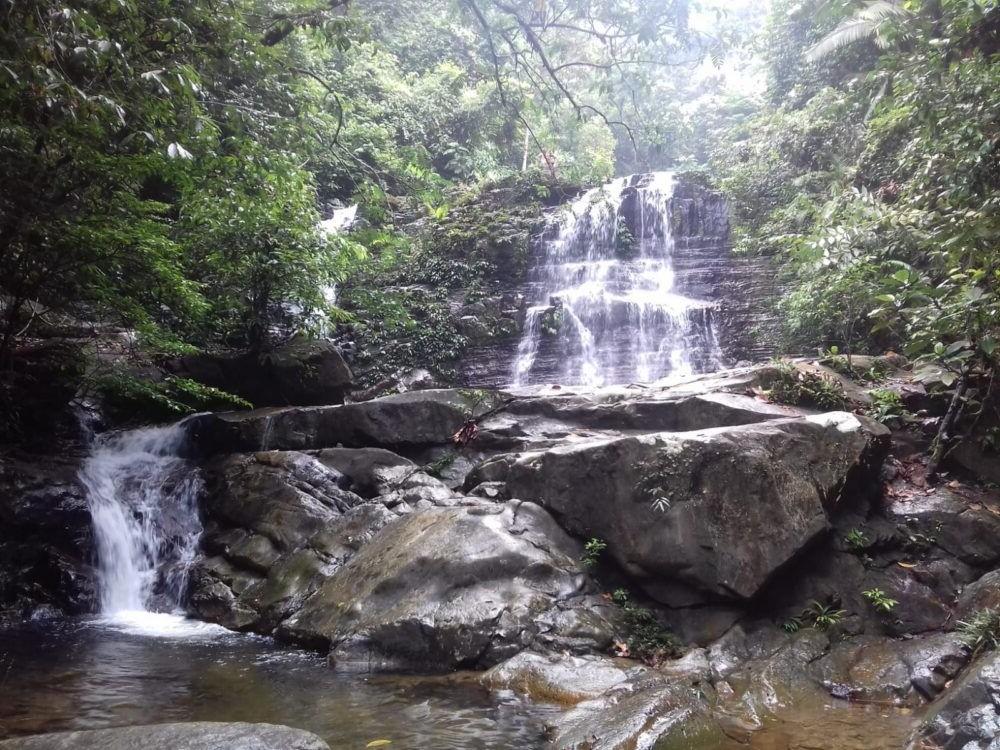 Destino Malasia, Parque Nacional de Kubah