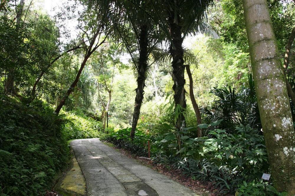 Destino Tropical Spice Garden Penang Island
