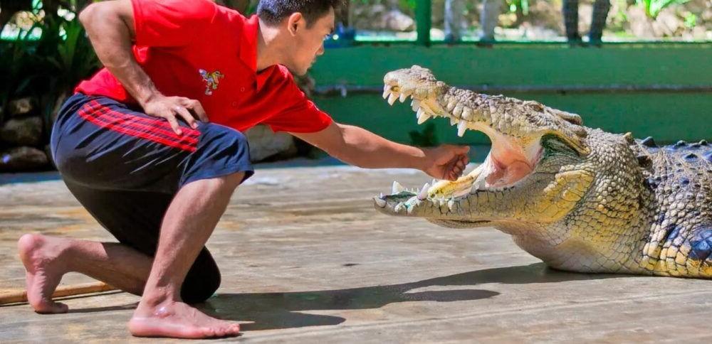 Destino Turístico Crocodile Adventureland