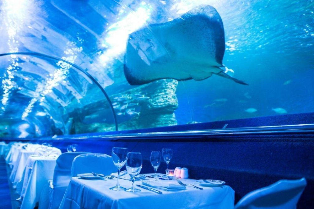 Destino Western Australian Aquarium