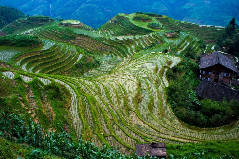 Destino del sur de china, Longji Terraces