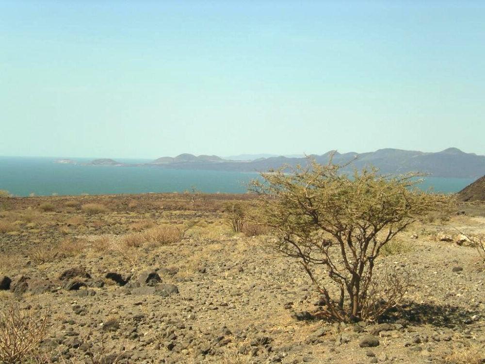 Destino kenía, Parque Nacional Sibiloi