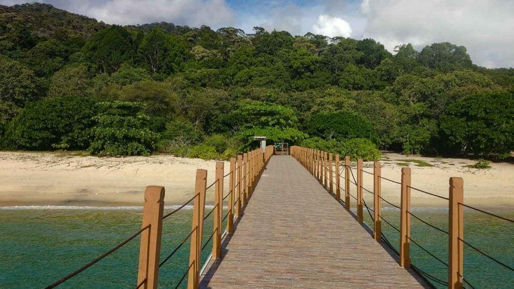 Penang National Park Penang Island