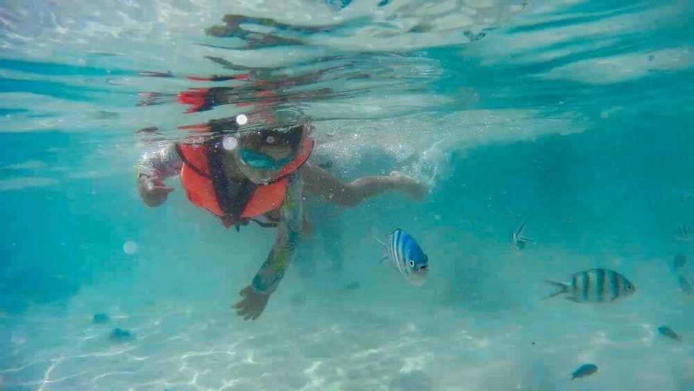 QUe hacer en las islas Perhentian, Snorkeling