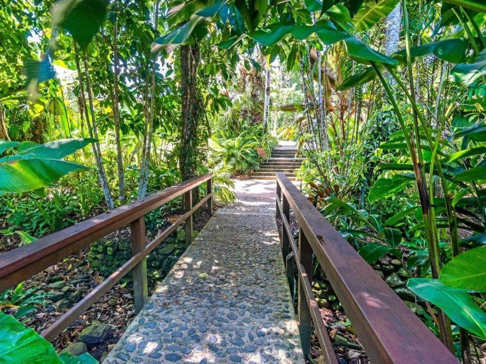Que hacer en Cairns Botanical Gardens