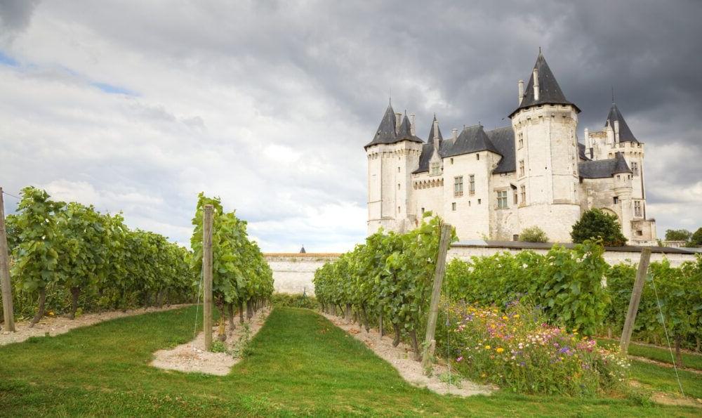 Regiones vinícolas de Burdeos
