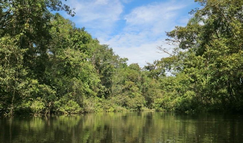 Reserva de Vida Silvestre Cuyabeno