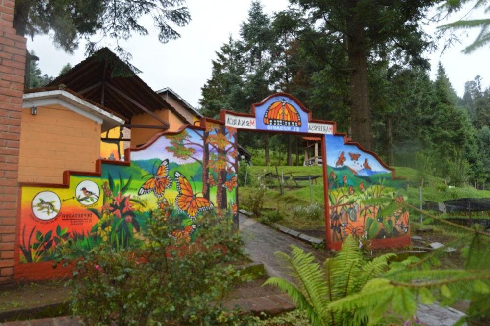 Reserva de la Biosfera Mariposa Monarca