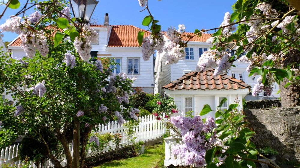 Skudeneshavn