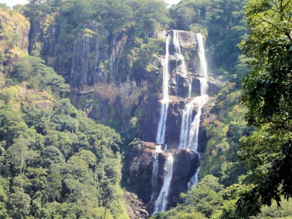 Un tour por el Parque Nacional Udzungwa Mountains