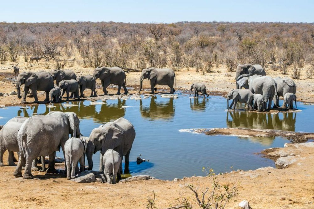 10 Mejores Lugares para Visitar en Namibia