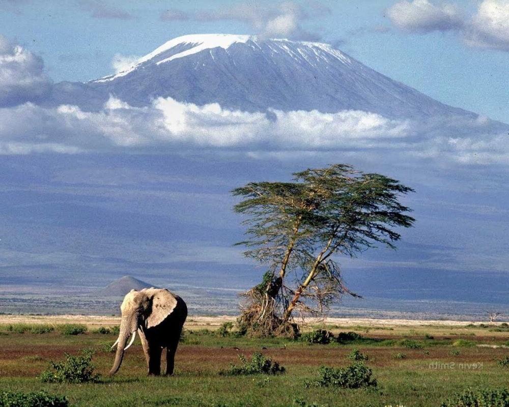 Viaje al Mount Kilimanjaro
