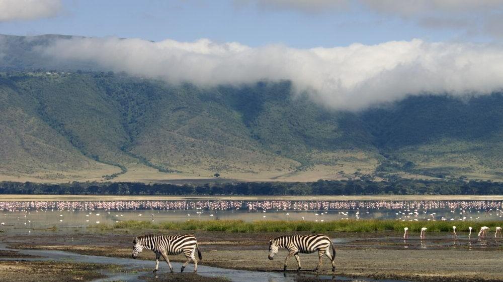 Viaje al Ngorongoro Conservation Area
