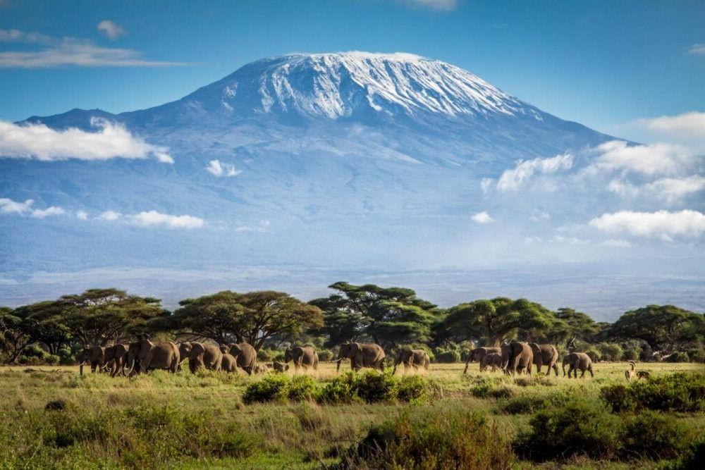 Vista del Parque Nacional del Kilimanjaro