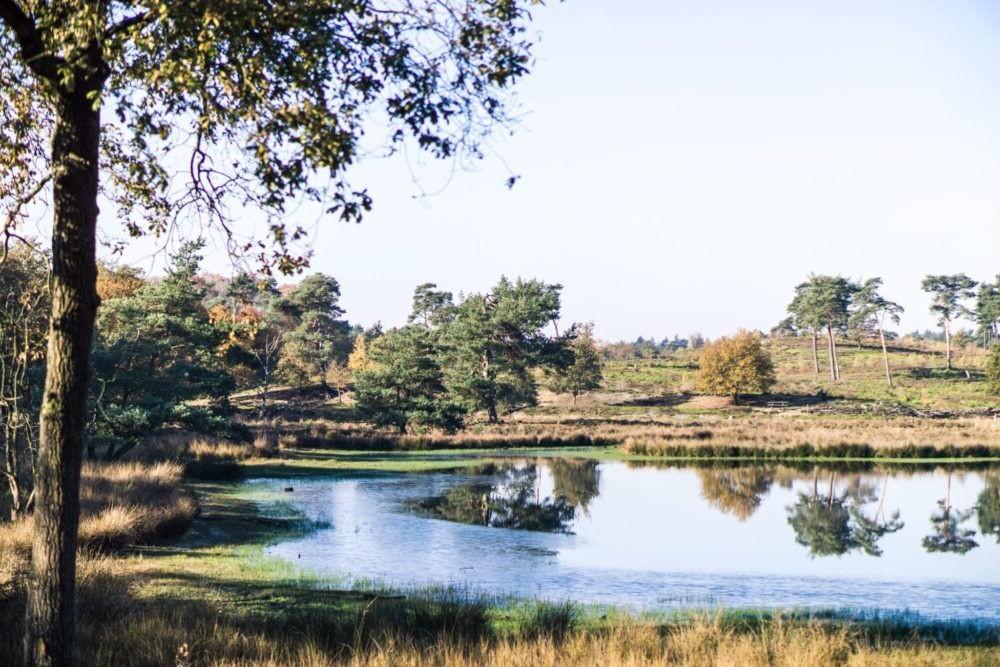 Destino Nationaal Park De Maasduinen