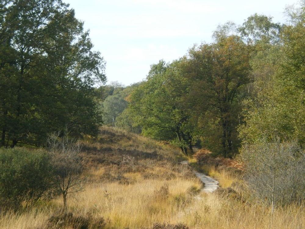 Destino National Park de Meinweg